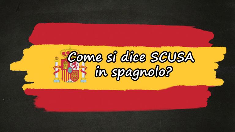 chiedere scusa in spagnolo